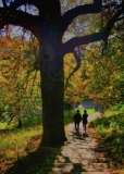 Autumn Couple, Greenwich Park, London