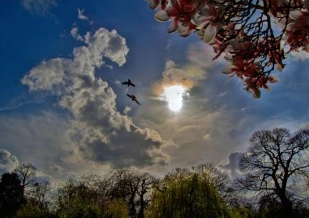 The Magic Of The Sky, Greenwich Park, London